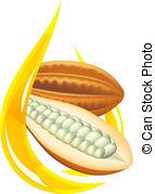 Cocoa butter. Stylized drop. Vector illustration on white...