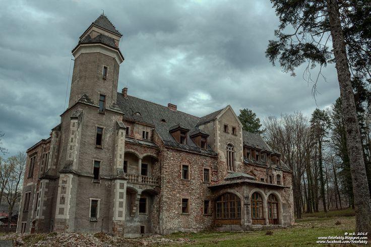 Pałac w Wojcieszowie Górnym wybudowany w 1891 roku na miejscu XVI- wiecznego dworu, przez Richarda von Bergmanna. Obecnie jest własnością prywatną i czeka na remont.