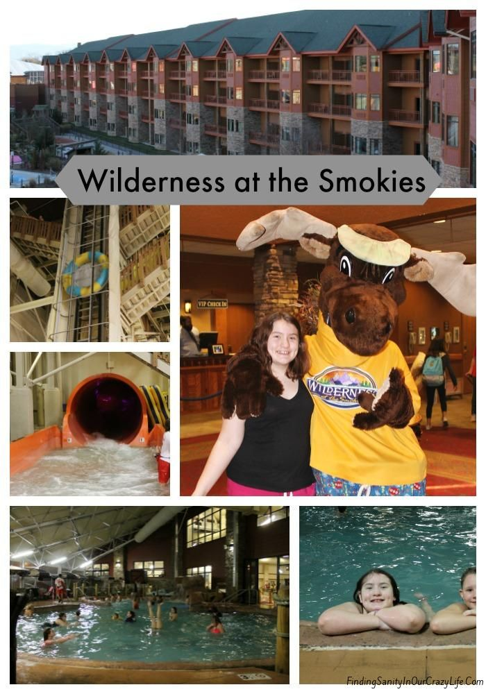 Escape the winter blues and getaway to Wilderness at the Smokies.#WildernessattheSmokies #Tennessee #Travel #Spon