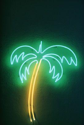 Foto: Neonreklame - USA, Florida, neon palm tree