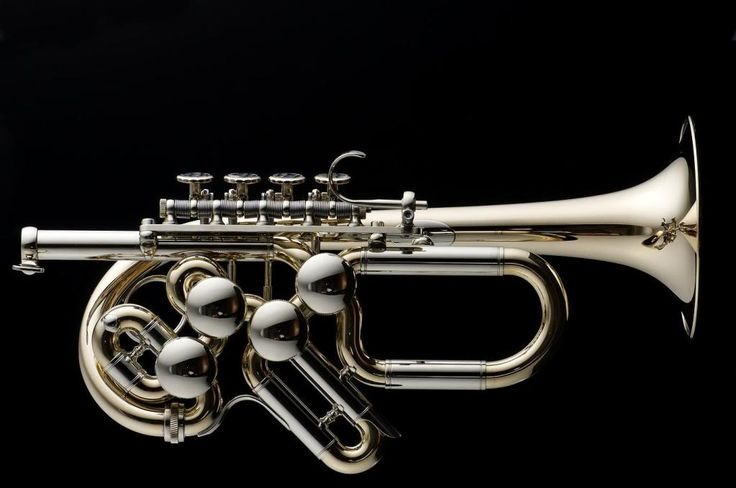 My New Piccolo Trumpet! - View topic - TrumpetHerald.com, the trumpeter's home on the web