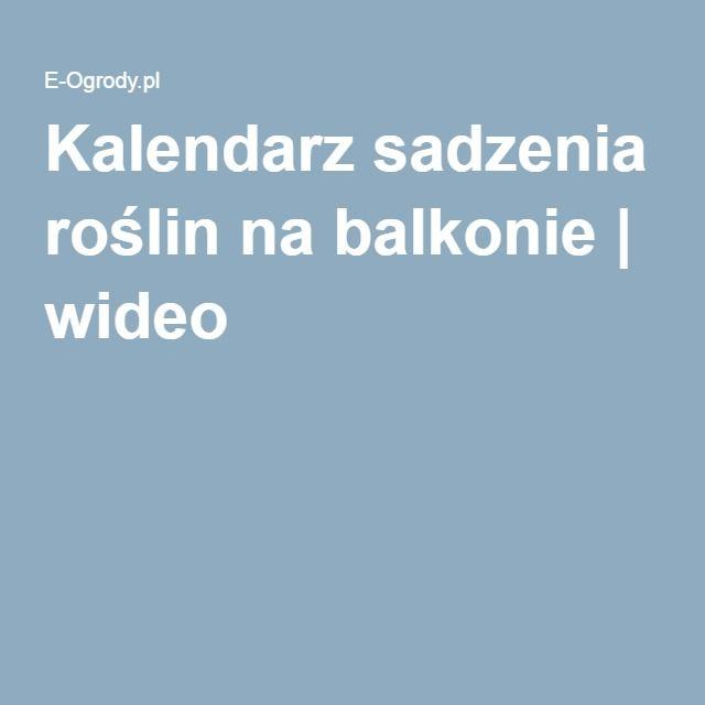 Kalendarz Sadzenia Roslin Na Balkonie In 2020 Sadzenie Roslin Rosliny Balkon