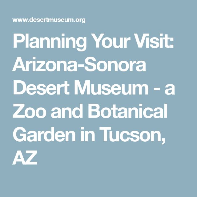 Planning Your Visit: Arizona-Sonora Desert Museum - a Zoo and Botanical Garden in Tucson, AZ