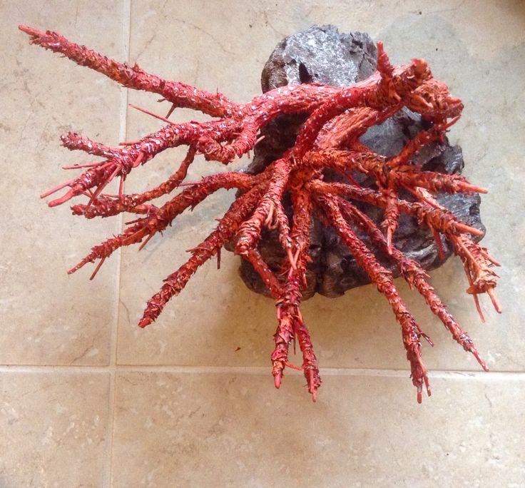 Coral/ mercan çalışması doğal kuru ağaç ve kabuk ile..