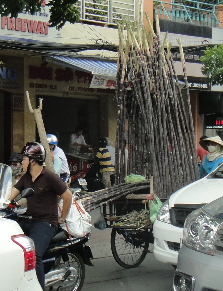 Need to transport a huge load of sugar cane? Use your motorbike - and a trailer!