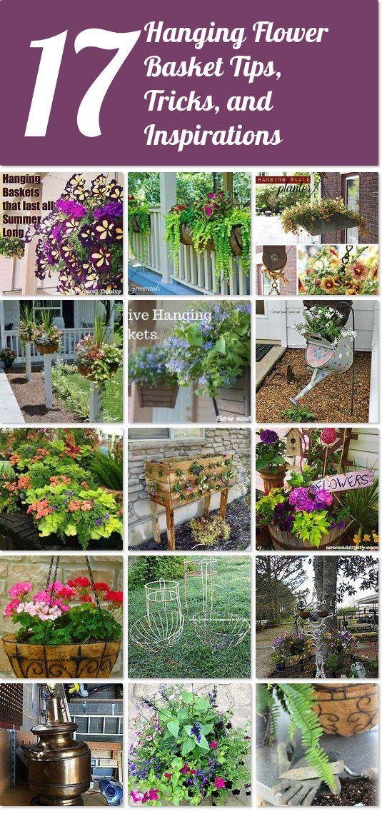 Hometalk | 17 hanging flower basket tips, tricks, and inspirations