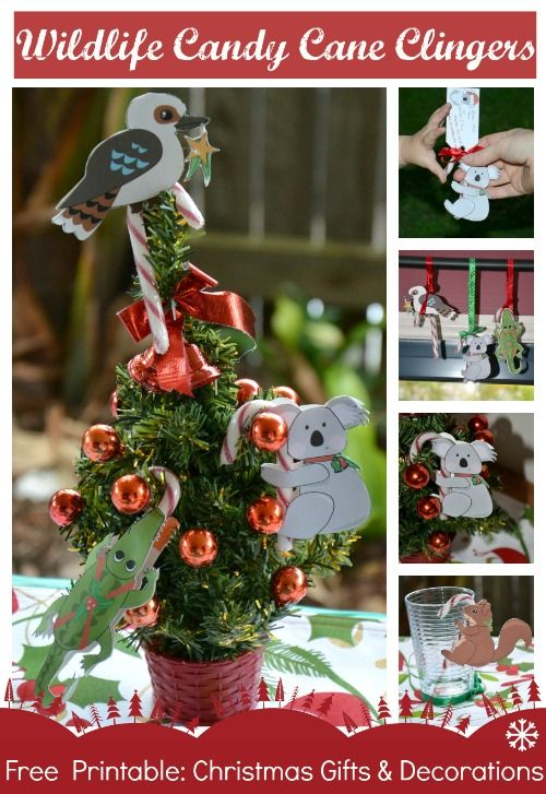 Candy Cane Clingers: Wildlife Decoration & Gift Idea FREE PRINTABLE | Wildlife Fun 4 Kids