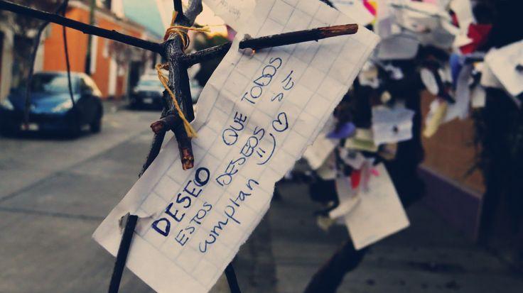 Deseo Que Todos Estos Deseos Se Cumplan =) <3 - Árbol De Los Deseos