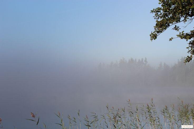 #foto #lake #morning #august #finland #Konnevesi #valokuvaus #järvi #aamu #sumu #elokuu #suomi #mist
