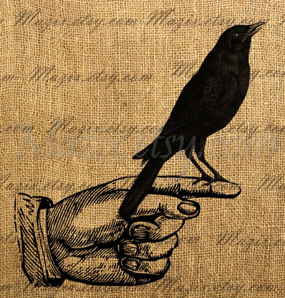 Crow And Cauldron Vintage Halloween: 17 Best Images About Crow Tattoo Images On Pinterest