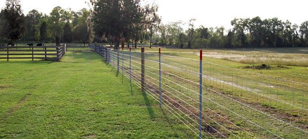 1000 Ideas About Wire Fence On Pinterest Fencing Wire