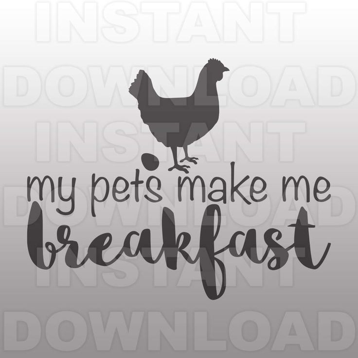My Pets Make Me Breakfast SVG,Chicken SVG,Kitchen Sign SVG,Farm Quote svg  -Commercial & Personal Use- svg file for Cricut,Silhouette svg by sammo on Etsy https://www.etsy.com/listing/506916724/my-pets-make-me-breakfast-svgchicken