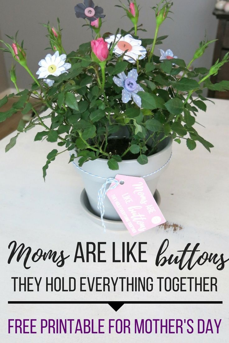 These button flowers look so cute in a potted plant! I made a really cute (and FREE) moms are like buttons printable for Mother's Day to tie onto the plant.