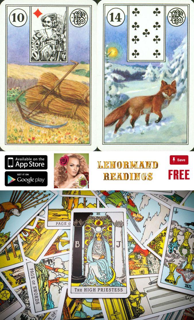 Basic Tarot Card Reading Ed 164 Aarhus Universitet: Best 25+ Cartomancy Ideas On Pinterest