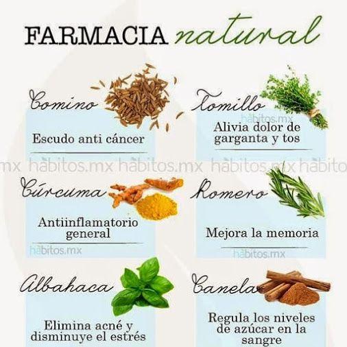 17 best images about medicinales on pinterest medicinal for Mezclas de plantas medicinales