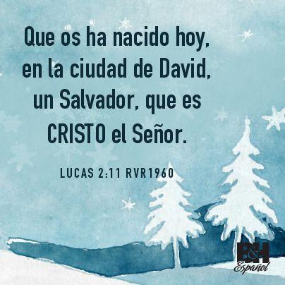 Que os ha nacido hoy, en la ciudad de David, un Salvador, que es CRISTO el Señor.  Lucas 2:11 RVR1960 - Luke 2:11 / La Biblia - The Bible