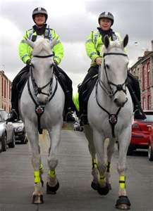 Police Horse Patrols