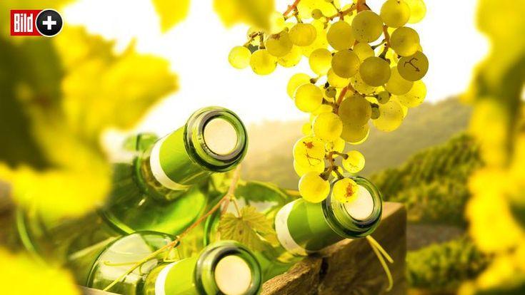 Neue Nachricht:  ift.tt/2AGuNO5  BILDplus Inhalt  Dank Super-sommer – Wein-Liebh… – Finanzieller Freiraum