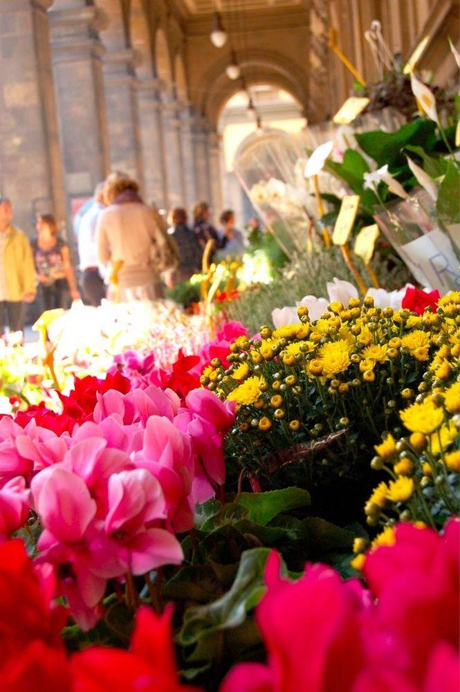 The Thursday Flower Market near Piazza Repubblica