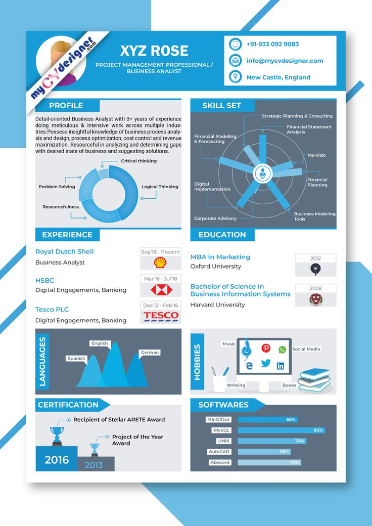 Infographic Resume Template Infographic CV Template My