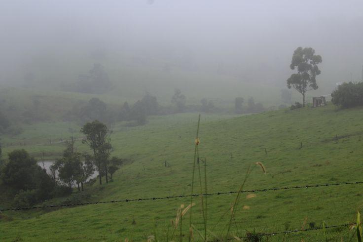 A misty outlook from Broken River hill!