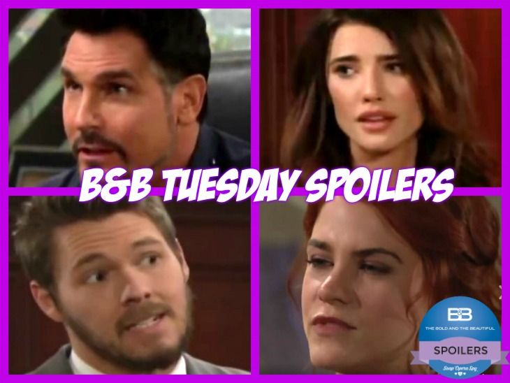 """The Bold and the Beautiful"" spoilers for Tuesday, May 9, tease that Steffy (Jacqueline MacInnes Wood) will be confused by her brother's stance on Sally (Courtney Hope). She just won't get why Thomas (Pierson Fode) constantly rushes to Sally's defense. Steffy will remind Thomas of Sally's brutal bet"