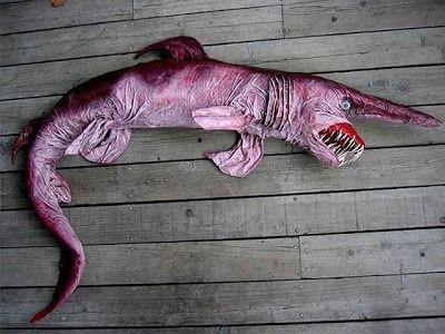 Tiburón Duende.  El tiburón duende es una de las especies de tiburón más extrañas que existen. Su descubrimiento no sucedió hasta 1898 pri...