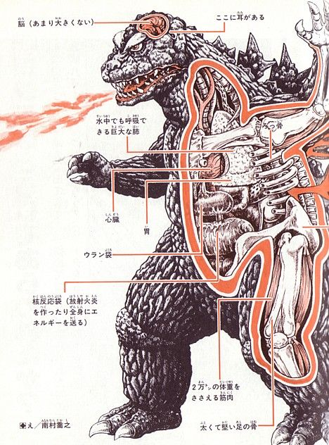 L'anatomie de Godzilla, Jiger, Gamera, Mothra et autres monstres japonais (Kaiju)