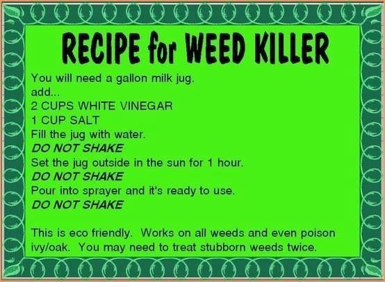 how to make weed killer out of vinegar
