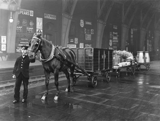 Horse drawn drays at St Pancras station, 9th January 1912
