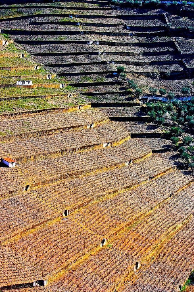 Alto Douro Vinhateiro Património Mundial da UNESCO - 2001 http://whc.unesco.org/en/list/1046/
