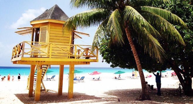 Exploring Barbados Like a Local!