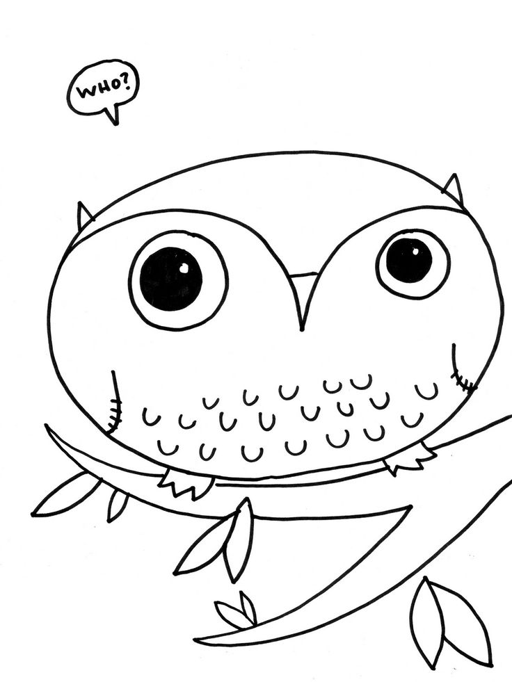 54 best jaylen t images on Pinterest Draw Owl coloring pages