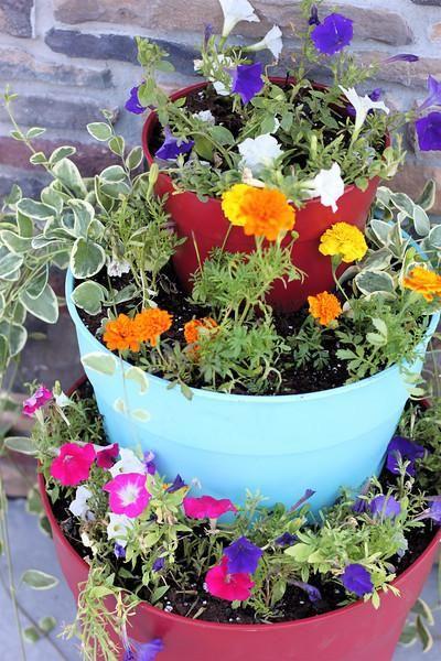 Les 64 meilleures images du tableau diy tiered planter sur for Planter en anglais