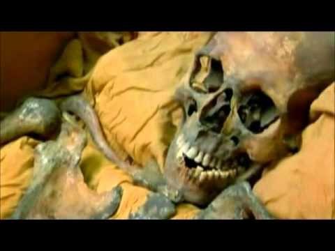 El ADN de Tutankamón (Resumen)