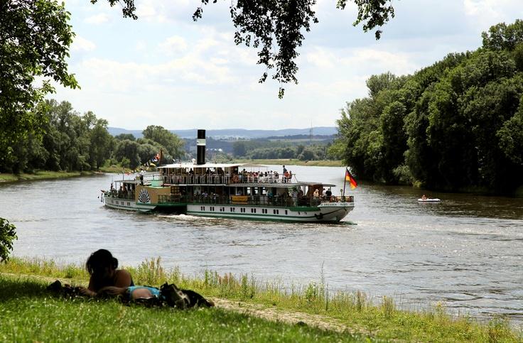Raddampfer zum Elbhangfest in Dresden Pillnitz
