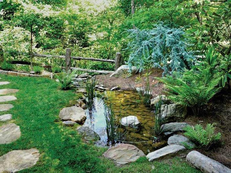 Der Bachlauf beginnt an einem Teich mit Wald-Atmosphäre