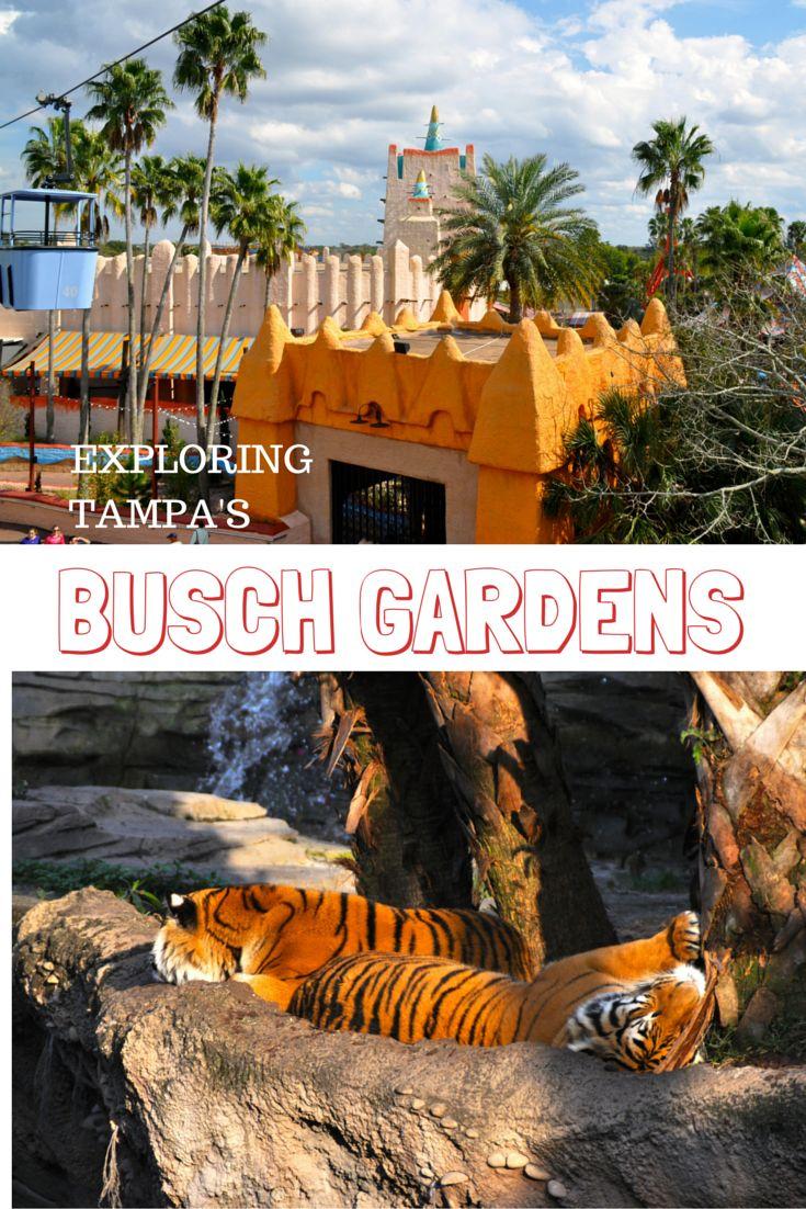 246 best Theme Park Travel images on Pinterest   Florida travel, Usa ...