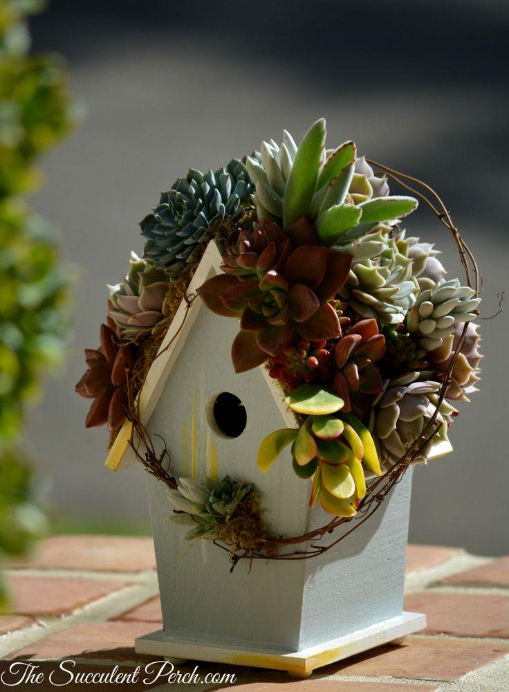 29 Best Images About Succulent Rooftop Birdhouses On Pinterest