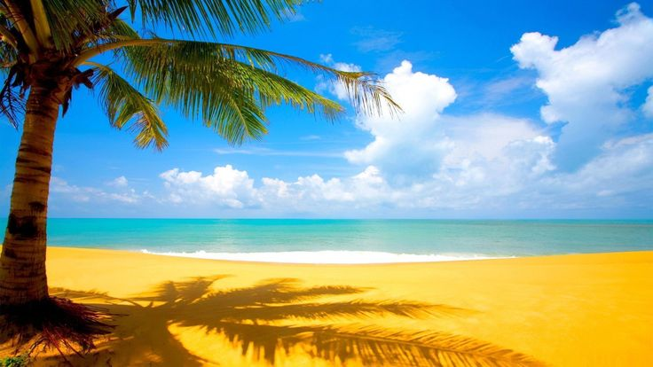 Nature Wallpapers Beach Cool Wallpaper Backgrounds for Phone ...