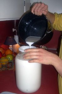 The Joys of Goats on the Homestead OR how to have Good goat's milk! The trick with goat's milk is keeping it cold. We place frozen ice packs in the milk pails to cool it immediately.