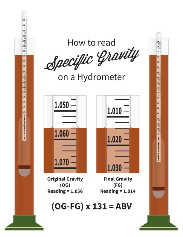 Illustration: Reading Specific Gravity | Winemaking ...