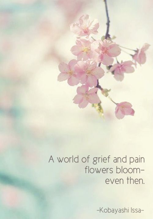 haiku poems about flowers - photo #25
