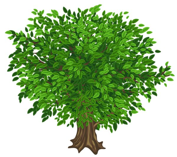 Gallery Recent Updates Tree Art Green Trees Clip Art