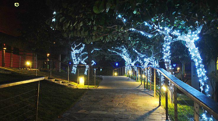O encanto e a magia do Natal você encontra no Feito Para Brilhar, projeto do Complexo Enotel Porto de Galinhas! ♥ www.enotel.com.br/default-pt.html  #enotel #enotelexperience #experienciaenotel #portodegalinhas #destinosbrasileiros #pernambuco #resort #travel #trip