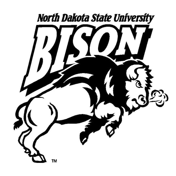 Bison Football Coloring Pages Download Logo Of Ndsu Bison 40