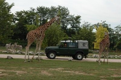 Parchi di Divertimento - Lago di Garda   Zoo Safari