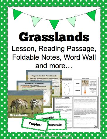 17 best images about 6th grade biome unit on pinterest map projects graphic organizers and. Black Bedroom Furniture Sets. Home Design Ideas