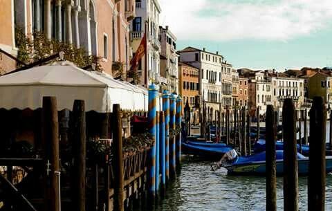 Venice 2015