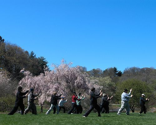 Think this would be good for Hashimoto's. Not be perceived as stress. Tai Chi: the Ultimate Exercise for Staying Physically and Mentally Young!